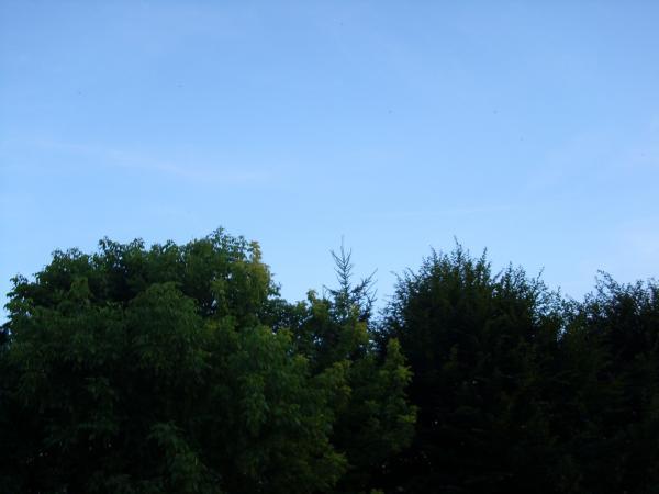 Wolkenlos