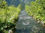 Bach mündet in den Königsee